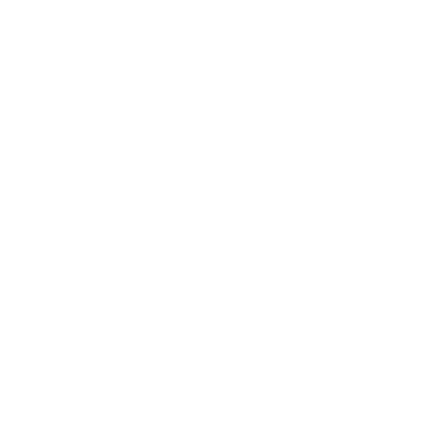 Buff Guys Auto Detail